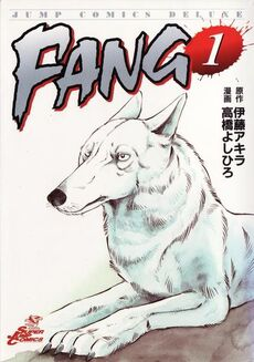 FANG cover
