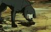 Poor hyena...