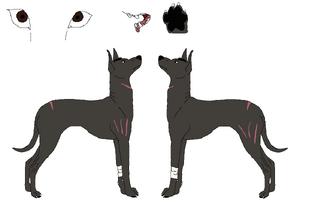 Xoloitzcuintli ref lines by nora and yagari-d58kme3