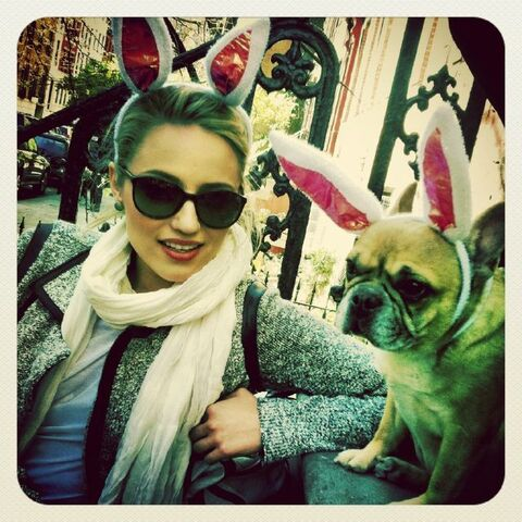 File:Diannawithpuppy.jpg