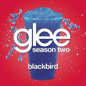 File:Blackbird!.jpg
