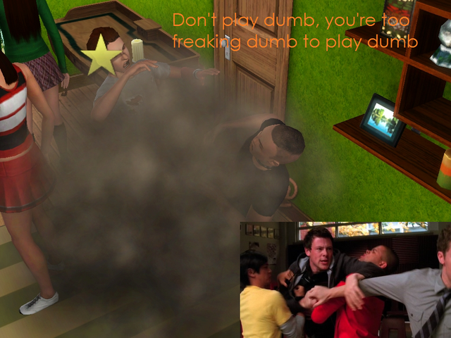File:Fight sims.png