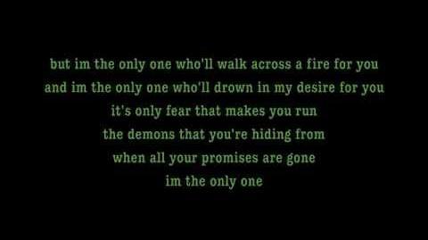 I'm The Only One - Melissa Etheridge Lyrics on screen