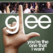 Glee- the one that i want