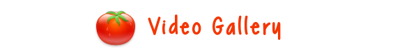 File:Videogal.png