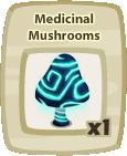 Inv Medicinal Mushroom
