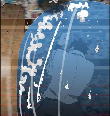 File:Water shield.jpg