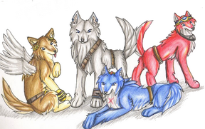 Cyber wolf pack.