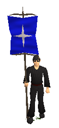 File:20101023204703!Saradomin heraldic banner equipped.png
