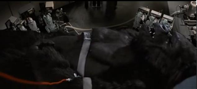 File:Kong Blood Transfusion.png