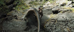 Venatosaurus11