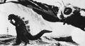 MVG - Godzilla and Mothra