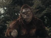Ike! Kong