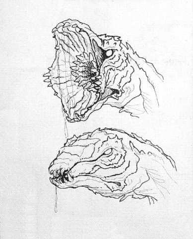 File:Concept Art - Godzilla vs. Biollante - Biollante Head 5.png