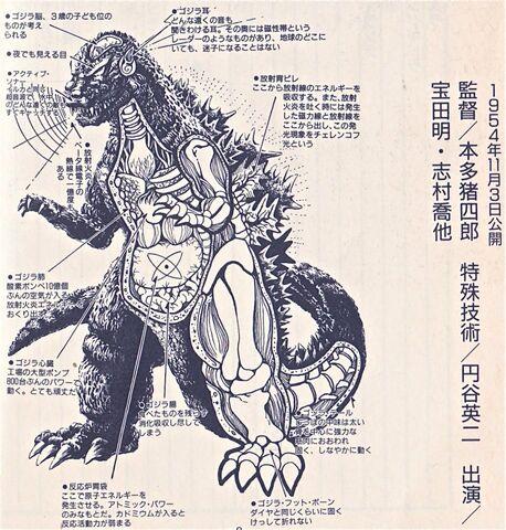 File:Another Godzilla anantomyimage.jpeg