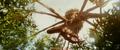 Kong Skull Island - Calvary TV Spot - 14