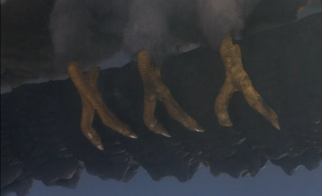 File:Godzilla And Mothra The Battle For Earth - - 7 - Mothra has chicken feet.png