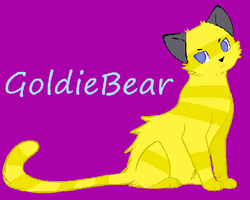 GoldieBear