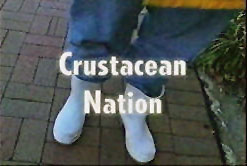 Crustacean Nation