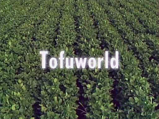 File:Tofuworld.jpg