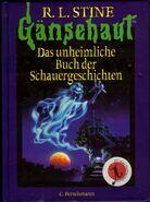 Special Edition 1 - German Cover - Das unheimliche Buch der Schauergeschichten