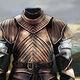 Brienne Armor