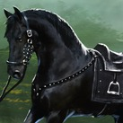 Tyrion's Horse
