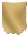 Banner Shape 02