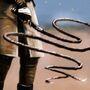 Nymeria's Whip