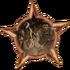 Badge-14-0