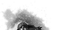 Beric Storm