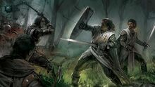 Knights-fight 00418866