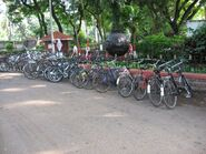 Cycles-at-sambhaji-park