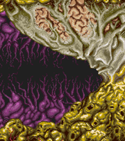 File:Bacterion.png