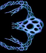 Nucleus Gradius NES
