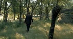 El bosque2