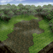 Misty Forest BattleBG