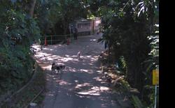 Mau Shen Village