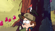 S1e1 woodpecker on dipper's head