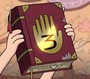 Tagebuch 3