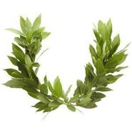 How-to-Make-a-Laurel-Wreath