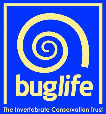 File:Buglife.jpg