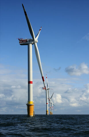 File:Windmills D1-D4 (Thornton Bank).jpg