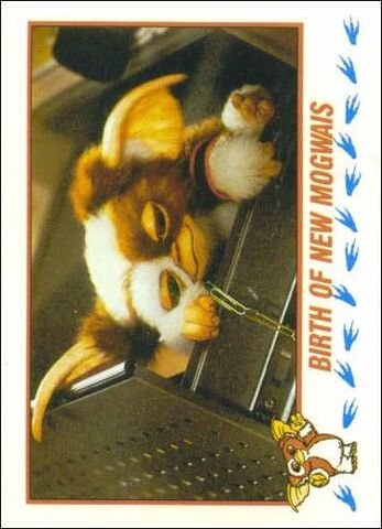 File:Topps Birth of New Mogwai.jpg