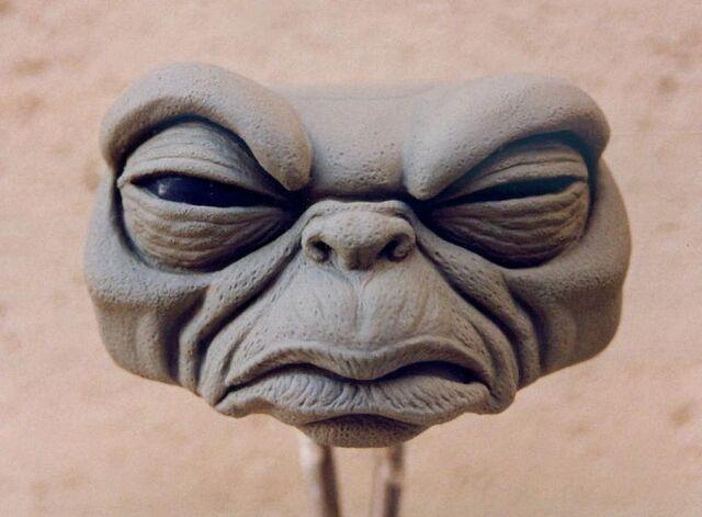 File:George Mogwai Face 2.jpg