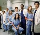 Temporada 1 (Grey's Anatomy)