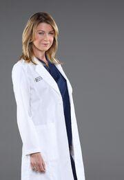 MeredithGreyS102