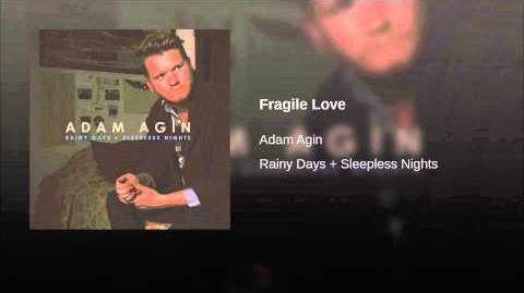 """Fragile Love"" - Adam Agin"