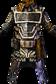 Praetorian Chestguard Icon