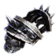 Exalted Shoulderplates Icon